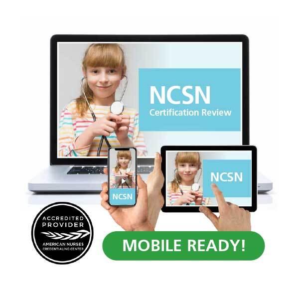E-courses-Small-Group-NCSN